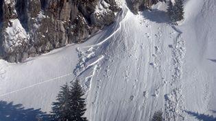 Une avalanche au Grand Som dans le massif de la Chartreuse (Isère), le 17 février 2012. (POLICE NATIONALE / AFP)