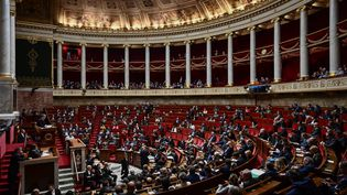 L'assemblée nationale à Paris, le 20 février 2019 (photo d'illustration). (PHILIPPE LOPEZ / AFP)