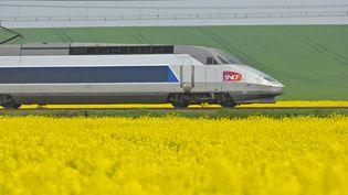 Un TGV près de Poitiers (Vienne). (J-B NADEAU / ONLY FRANCE / AFP)