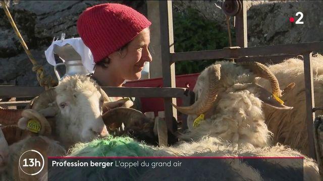 Profession : le métier de berger continue d'attirer