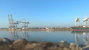 Le Havre : le premier port à conteneurs français subit la concurrence d'Anvers (FRANCE 3)