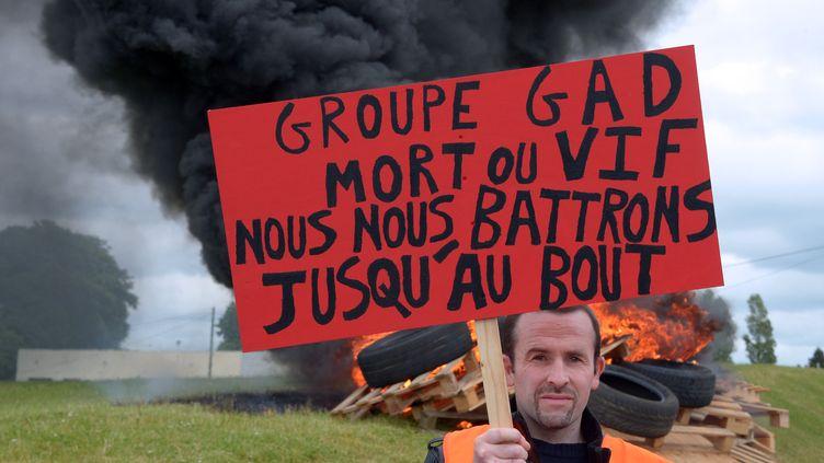 Un employé de l'abattoir Gad à Lampaul-Guimiliau (Finistère), le 11 juin 2013. (DAMIEN MEYER / AFP)