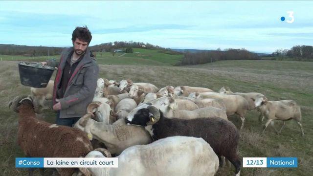 Consommation : en Ariège, une filière laine en circuit court et juste pour les éleveurs