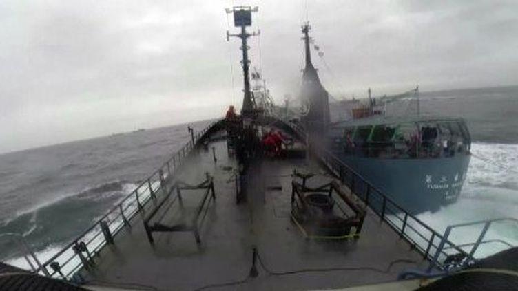 Capture d'écran du document Sea Shepherd du 2 février 2014. (Sea Shepherd)