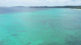 Dans les îles Kei, en Indonésie, on trouve des eaux turquoise et un fond marin exceptionnel. Une perle préservée, mais où le gouvernement veut attirer les touristes pour désengorger Bali, qui suffoque. (France 2)