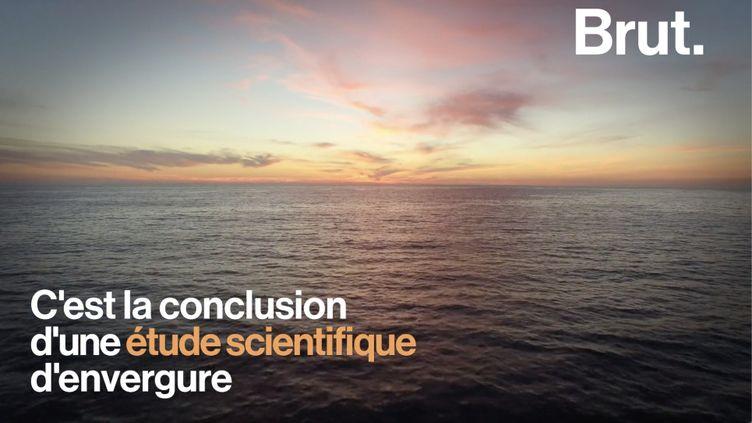 VIDEO. Régénérer les océans en 30 ans ne serait pas une mission impossible (BRUT)