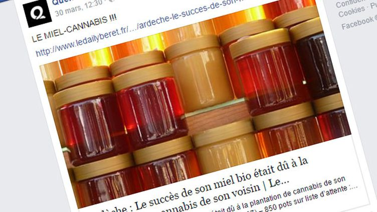 (Le faux article du Daily Béret a été partagé plus de 60.000 fois sur Facebook © Capture d'écran Facebook)