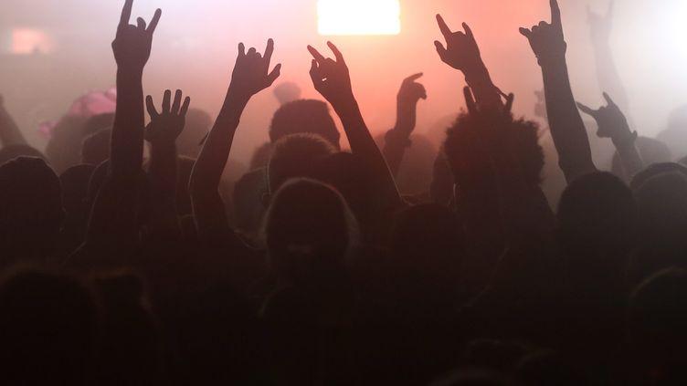Un concert de rock (photo d'illustration). (LIONEL VADAM / MAXPPP)