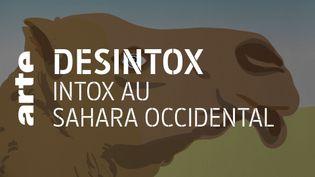 Sahara Occidental : les fausses images diffusées par le Front Polisario sur les réseaux sociaux. (ARTE/2P2L)