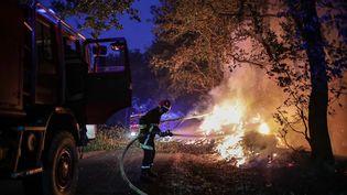 Le feu de forêt s'est déclaré dans le sud de la Charente-Maritime, à Bédenac, mercredi 4 septembre. (DAVID THIERRY / MAXPPP)