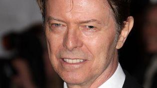 David Bowie (2008)  (Andrew H. Walker/AFP)