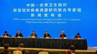 Les experts de l'OMS lors d'une conférence à Wuhan (Chine), le 9 février 2021. (HECTOR RETAMAL / AFP)