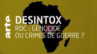 Désintox. Non, il n'y a pas de génocide en République Démocratique du Congo (ARTE/2P2L)