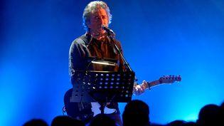 Jean-Louis Murat en concert en 2016. Photo d'illustration. (THIERRY LINDAUER / MAXPPP)