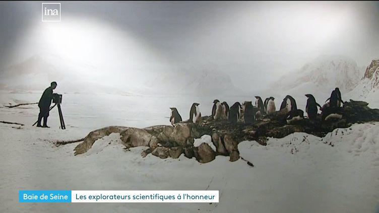 De l'Antarctique à Madagascar... explorateurs d'hier et d'aujourd'hui ; deux expositions au Museum d'histoire naturelle du Havre (France 3 Normandie / INA)