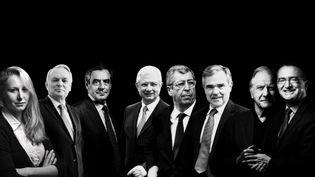 Marion Maréchal-Le Pen, Jean-Marc Ayrault, François Fillon,Claude Bartolone, Patrick Balkany, Bernard Accoyer,Noël Mamère et Hervé Mariton. (ANSELME CALABRESE / FRANCEINFO)