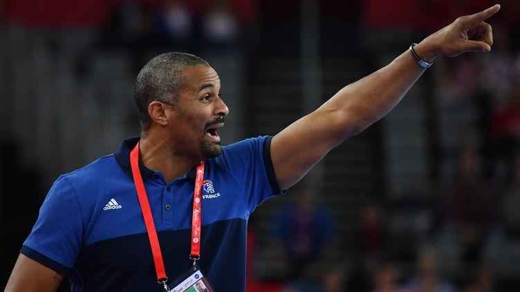 Le sélectionneur de l'équipe de france de hand Didier Dinart (ANDREJ ISAKOVIC / AFP)
