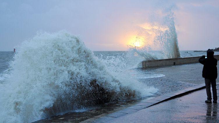 Un homme défie les vagues, le 11 janvier 2015, à La Rochelle (Charente-Maritime). (XAVIER LEOTY / AFP)