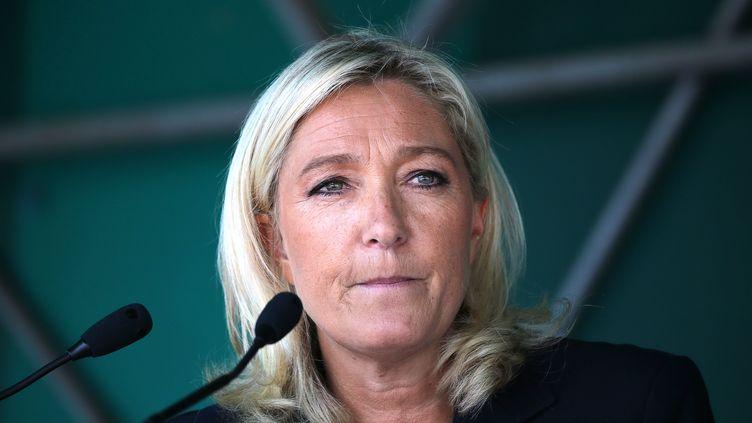 Marine Le Pen, présidente du FN, lors d'un meeting à Brachay (Haute-Marne), le 30 août 2014. (FRANCOIS NASCIMBENI / AFP)
