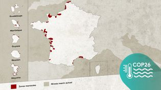 La carte de France des zones menacées par la montée des eaux à horizon 2100. (JESSICA KOMGUEN, ELLEN LOZON / FRANCEINFO)