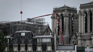 Des ouvriers pendant l'opération de démontage de l'échafaudage de la cathédrale de Notre-Dame, le 8 juin 2020 à Paris. (PHILIPPE LOPEZ / AFP)