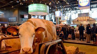 Une vache au Salon de l'agriculture, porte de Versailles, à Paris, le 22 février 2015. (MAXPPP)