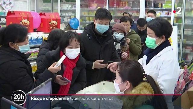 Coronavirus : quels sont les risques d'épidémie en France ?