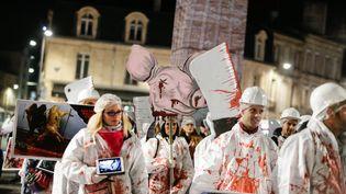 """Le """"défilé macabre"""" organisé par L214 à Bordeaux, le 31 octobre 2017. (THIBAUD MORITZ / MAXPPP)"""