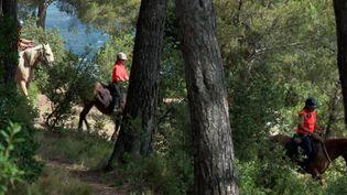Des cavalières bénévoles parcourent le massif de Montaiguet pour prévenir les feux de forêts et sensibiliser les promeneurs. (France 3 Marseille)