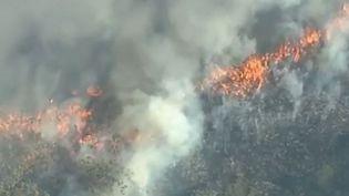 L'Australie fait face à des incendies immenses, qui mobilisent quelque 1 000 pompiers face à 130 foyers d'incendie. (FRANCE 2)