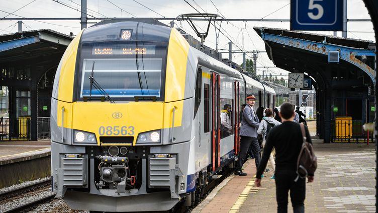 La société nationale de chemin de fer belge (SNCB) va offrir des billets de train gratuits aux habitants pour les inciter à voter, le 25 mai 2014, pour les élections européennes. (ERIC LALMAND / BELGA MAG / AFP)