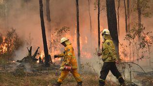 Samedi 4 janvier 2020,3 000 réservistes de l'armée ont étéappelés pour prêter main forte aux pompiers australiens, souvent volontaires, exténués. Ci-contre, deux pompiers mobilisés enNouvelle-Gallesdu Sud.  (PETER PARKS / AFP)