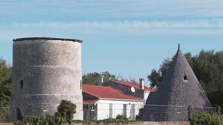 Patrimoine : après un siècle en sommeil, la renaissance du moulin de La Brée (FRANCE 3)