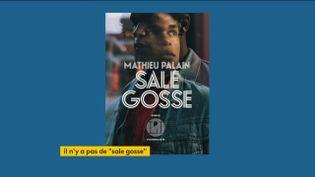 """Le livre de Mathieu Palain, """"Sale Gosse"""" (FRANCEINFO)"""