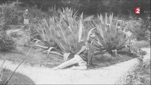 Bretagne : à la découverte de l'Ile-de-Batz où poussent des plantes exotiques