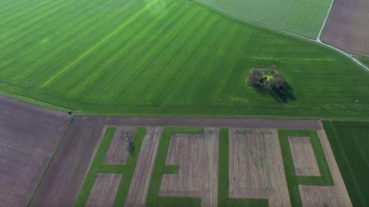 """Capture écran Youtube de la vidéo """"Help, le message d'un agriculteur d'Athée-sur-Cher"""" de Vincent Louault, le 13 avril 2017. (VINCENT LOUAULT)"""