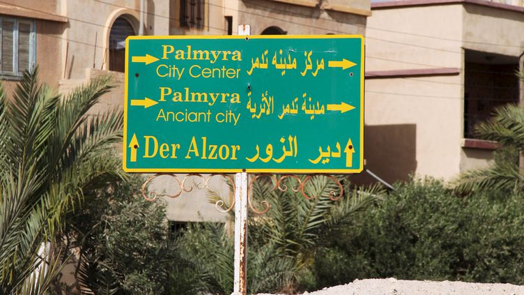 A Palmyre (Syrie), le 19 mai 2015. (  REUTERS)