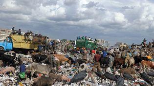 Décharge à ciel ouvert de Dandora, dans la banlieue de Nairobi (Kenya) (AFP / SIMON MAINA)