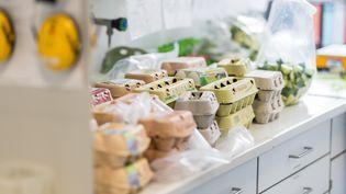 Des œufs retirés d'un supermarché attendent d'être testés dans un laboratoire pour détecter la présence d'un insecticide interdit, vendredi 4 août 2017 à Muenster (Allemagne). (MAXPPP)