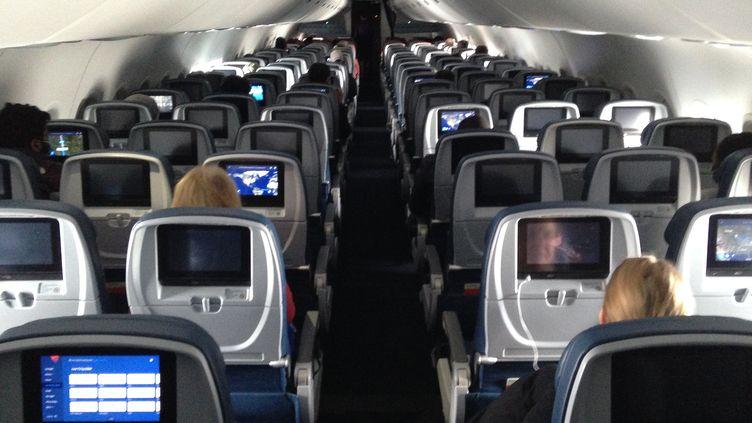 La cabine d'un avion de la compagnie Delta, le 25 avril 2020, entre Minneapolis et Baltimore. (SEBASTIEN DUVAL / AFP)