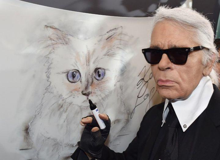 Karl Lagerfeld dessinant sa chatte Choupette (2015)  (JENS KALAENE / DPA / dpa Picture-Alliance/AFP)