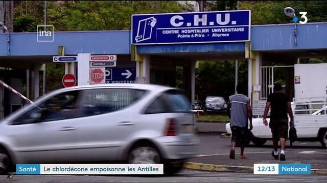 Santé : le chlordécone empoisonne les Antilles
