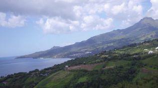 Un premier cluster de contamination au Covid-19 a été détecté en Martinique. Le département était jusqu'ici épargné. À l'origine, une soirée entre jeunes.Les laboratoires sont pris d'assaut pour des dépistages. (France 2)