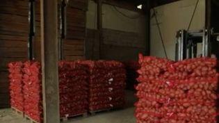 Dans l'Orne, un producteur de pommes de terre a décidé d'organiser dans sa ferme une vente à prix bradé. Victime de la crise sanitaire et de la fermeture des restaurants, il se retrouve avec un stock de 30 tonnes qui risque de pourrir sur place. L'opération connait un franc succès : les clients se bousculent. (FRANCE 2)