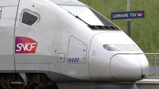 """Une rame de TGV stationne le 30 mai 2007 sur le quai de la gare """"Lorraine"""" du TGV Est européen, le jour de son inauguration à Louvigny (Moselle). (JEAN-CHRISTOPHE VERHAEGEN / AFP)"""
