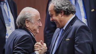 Le président de la Fifa, Sepp Blatter, et le président de l'UEFA, Michel Platini, le 29 mai 2015 à Zurich (Suisse). (MICHAEL BUHOLZER / AFP)