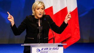 La candidate du Front national à l'élection présidentielle, Marine Le Pen, lors d'un meeting à Lyon, le 5 février 2017. (ROBERT PRATTA / REUTERS)