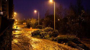 La tempête Gloria fait déborder La Tet à Perpignan, le mercredi 22 janvier 2020. (JC MILHET / HANS LUCAS / AFP)