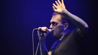 Daniel Darc, l'ancien chanteur de Taxi-Girl, est décédé le 28 février à l'âge de 53 ans  (PHOTOPQR/LA MONTAGNE/Patrick Delobelle)