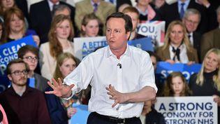 Le Premier ministre britannique Davis Cameron en meeting dans une école de Chippenham (Royaume-Uni), le 30 mars 2015. (LEON NEAL / REUTERS)